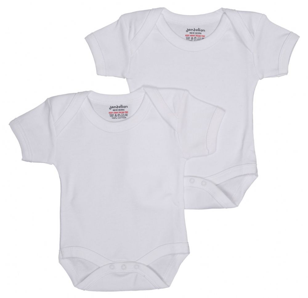 Babies Pack of 2 Bodysuits
